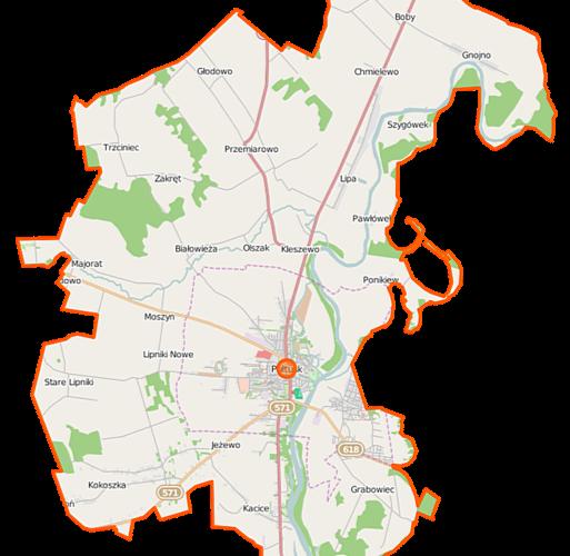Pułtusk gmina mapa