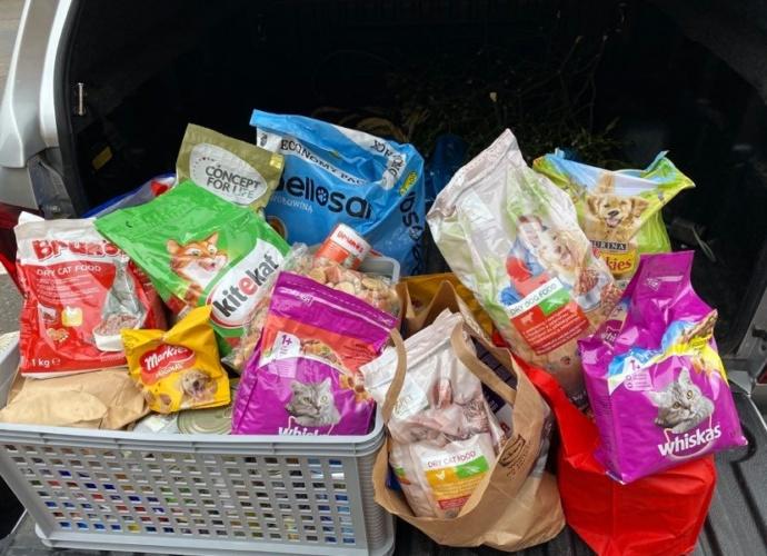 przekazanie karmy dla bezdomnych psów