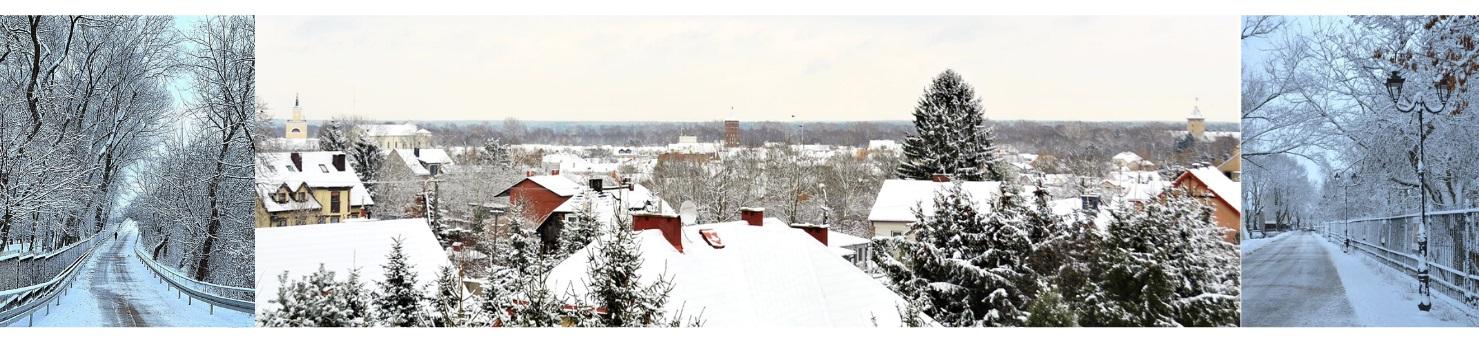 baner Pułtusk zima