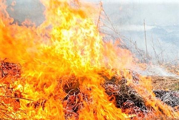 Agencja Restrukturyzacji i Modernizacji Rolnictwa przypomina – wypalanie traw grozi utratą dopłat